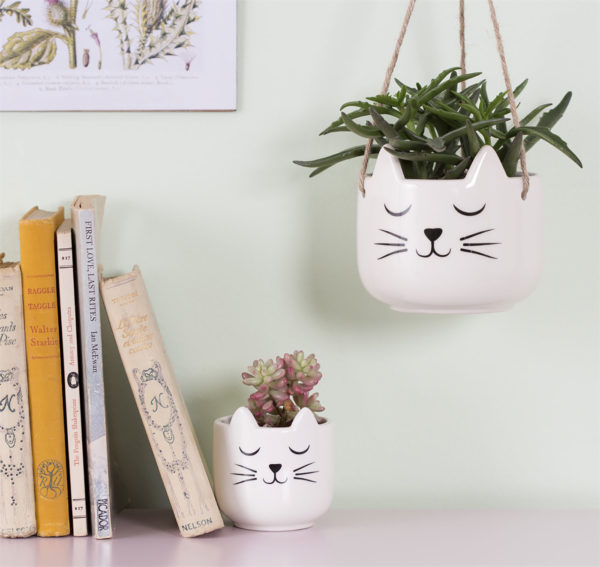 Cat's Whiskers Planters